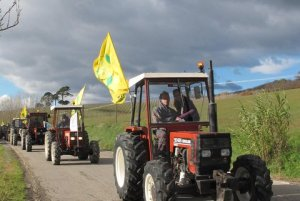 Tractors_on_parade